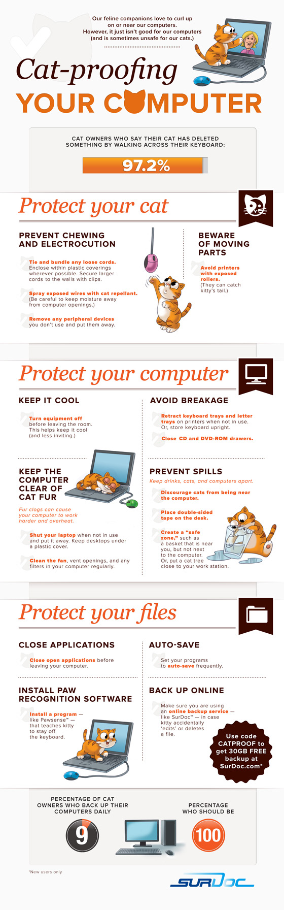 Cat Proof Your Computer infographic